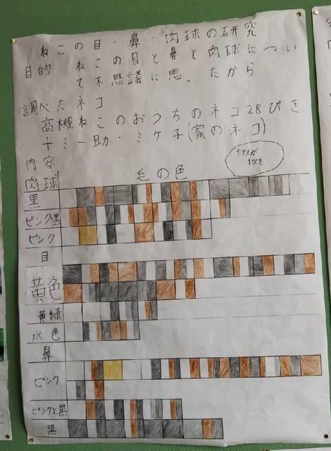 息子さん自由研究2019-1.jpg