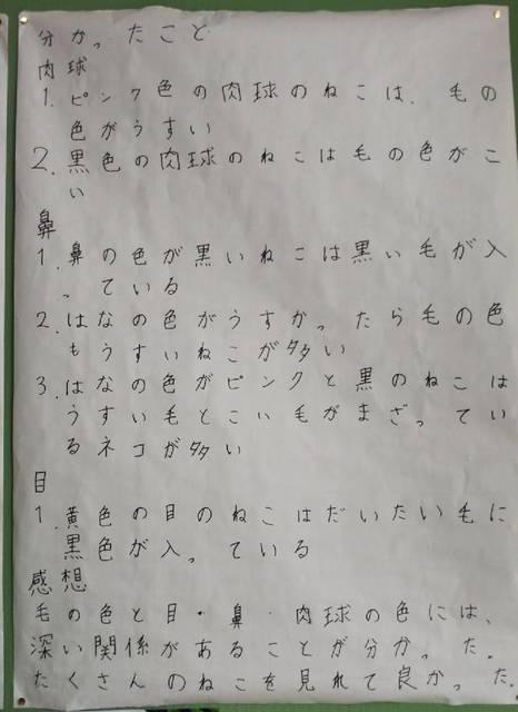 息子さん自由研究2019-2.jpg